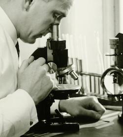 在显微镜下观察事物有时会有意想不到的发现